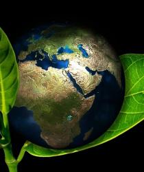 Zemědělský půdní fond v rámci Mezinárodního roku půdy