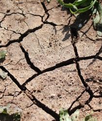 Na boj proti suchu 8 miliard Kč