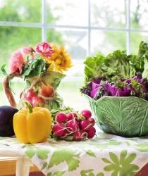 16. října oslavte Světový den výživy