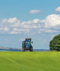 Zakáže Evropská komise herbicid Roundup?