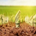 Ceny zemědělské půdy