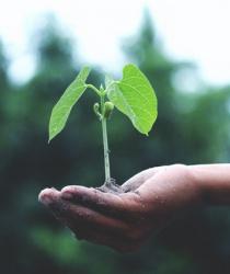 Proč investovat právě do zemědělského pozemku?