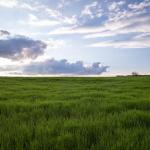Zákony o prodeji a nákupu pozemků